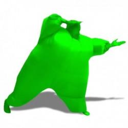 Déguisement bonhomme vert