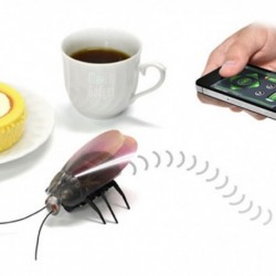 Cafard télécommandé par iPhone