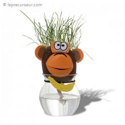 Tête d'animal cheveux en herbe